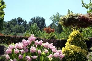 eden-garden-1427372-m