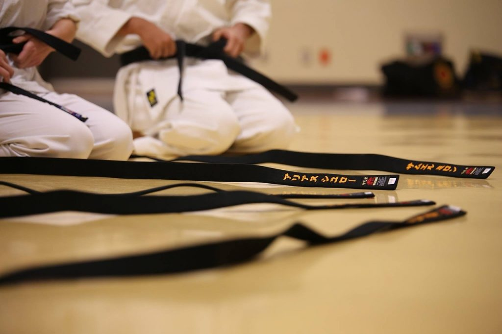 pasy_karate